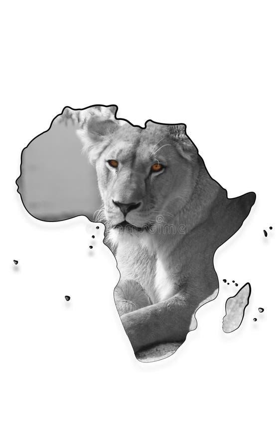 非洲大陆的映射有雌狮的 免版税库存照片