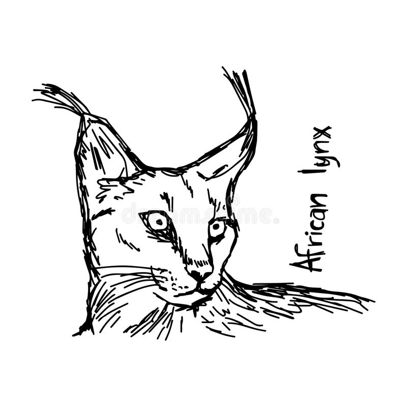 非洲天猫座-导航例证剪影手拉与黑色 库存例证