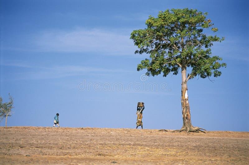 非洲孩子妇女 免版税库存图片