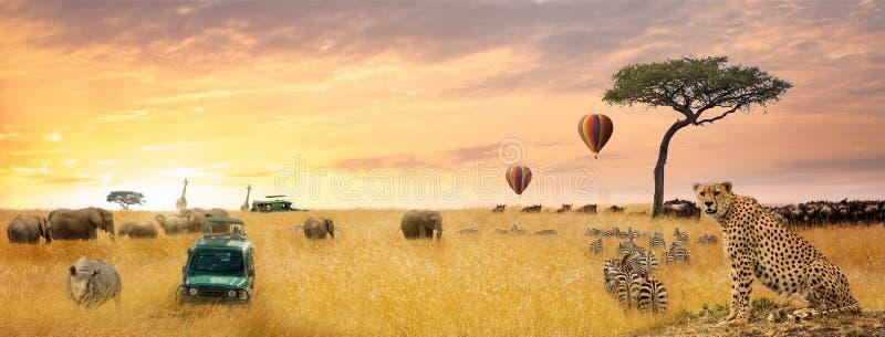 非洲徒步旅行队场面网横幅 免版税库存照片