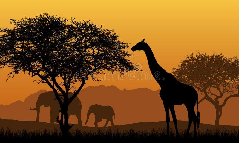 非洲徒步旅行队的现实例证与山风景的、树和大象和长颈鹿 在与上升的橙色天空下 向量例证