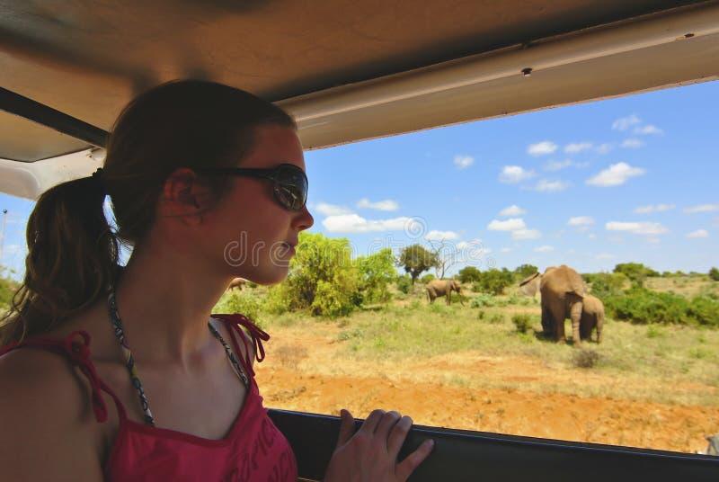 非洲徒步旅行队 免版税库存照片