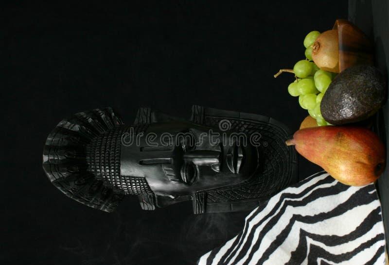 非洲果子屏蔽皮肤部族斑马 免版税库存照片