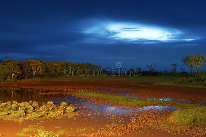 非洲横向晚上 免版税图库摄影
