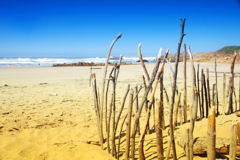 非洲海滩knysna南舒展 免版税库存照片