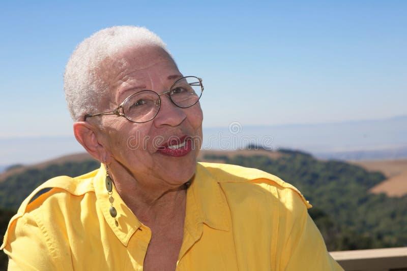 非洲裔美国人户外公民高级微笑 图库摄影