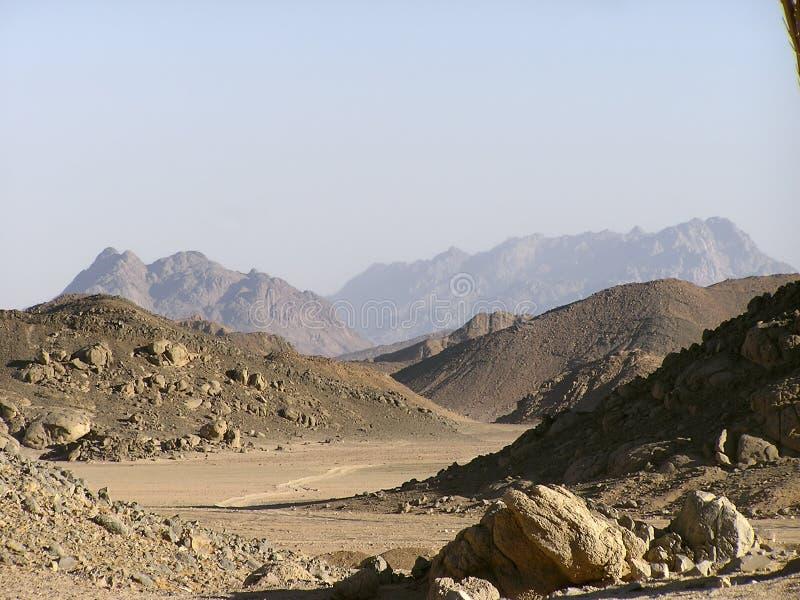 非洲阿拉伯dunes1埃及沙子 库存图片