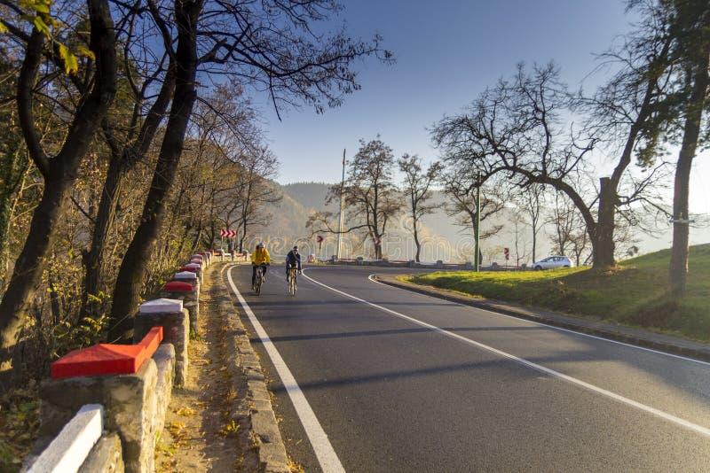 非职业骑自行车者 免版税库存照片