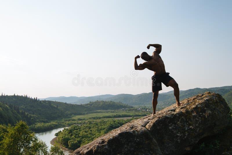 Download 非裔美国人的爱好健美者剪影有摆在岩石的赤裸躯干的 绿色山自然背景 库存照片 - 图片 包括有 激情, 绿色: 72366040