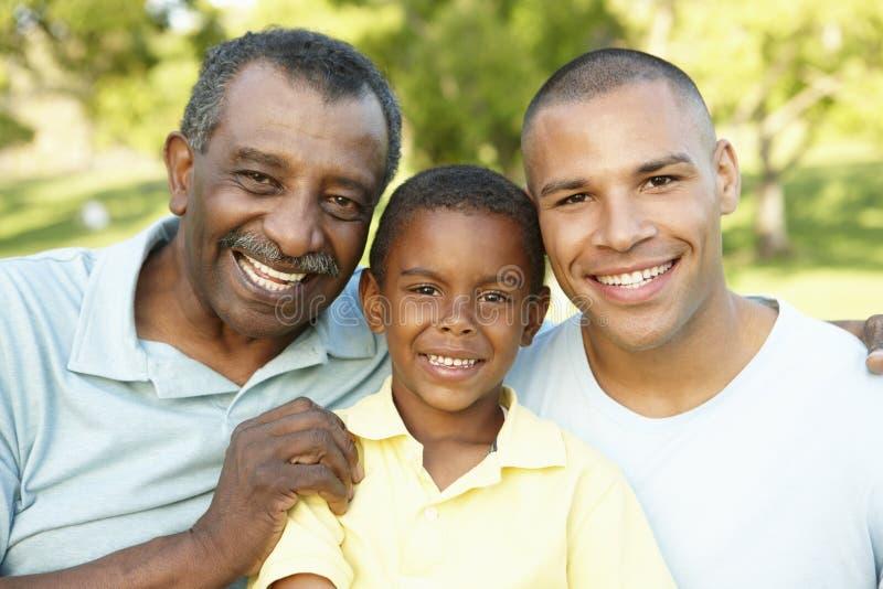 非裔美国人的祖父、放松在公园的父亲和儿子 免版税库存图片