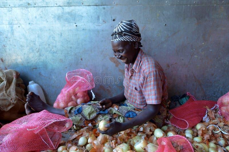 非洲农夫 库存图片