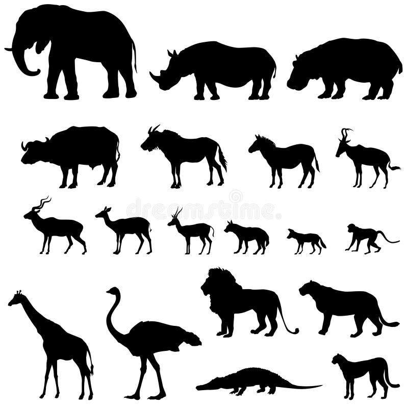 非洲动物被设置的剪影 热带家畜动物  库存例证