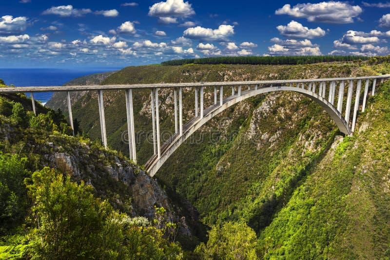 非洲南bloukrans的桥梁 免版税库存图片