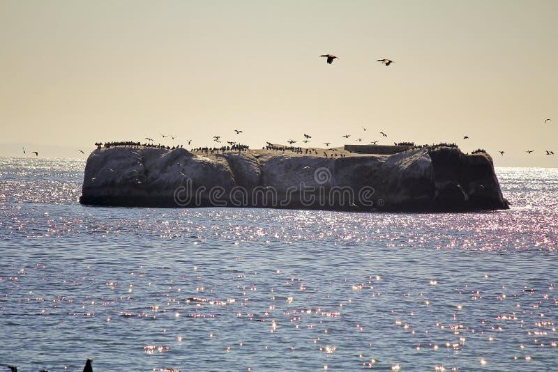 非洲-在冰砾的海角点的海岸 免版税库存照片