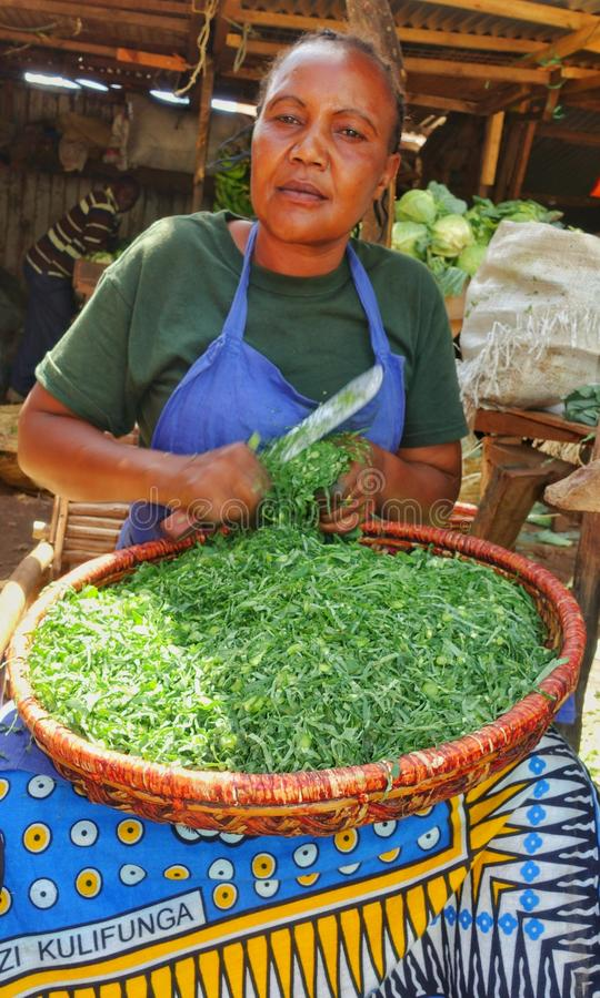 非洲妇女切口菜 库存图片