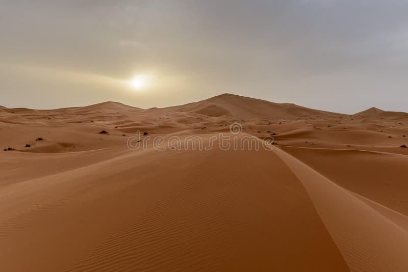 非洲尔格Chebbi沙丘在Morroco-撒哈拉大沙漠 免版税库存图片