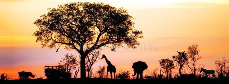非洲徒步旅行队剪影横幅 免版税库存图片