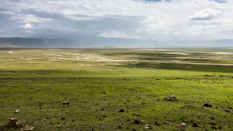 非洲火山口ngorongoro坦桑尼亚 库存照片