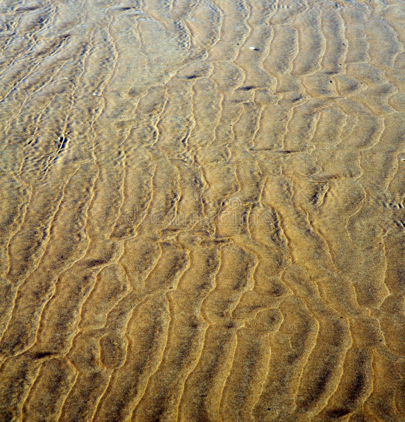 非洲褐色海岸线湿沙子海滩的摩洛哥在大西洋o附近 库存图片