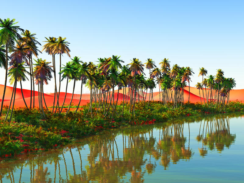非洲绿洲 库存图片