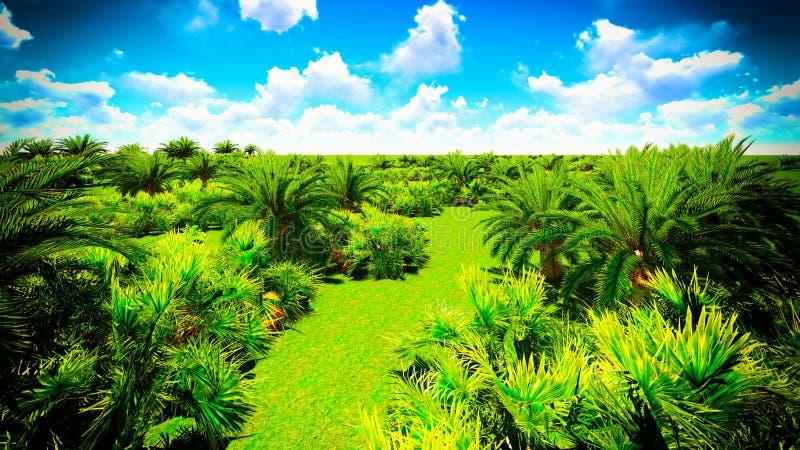非洲绿洲 免版税库存照片