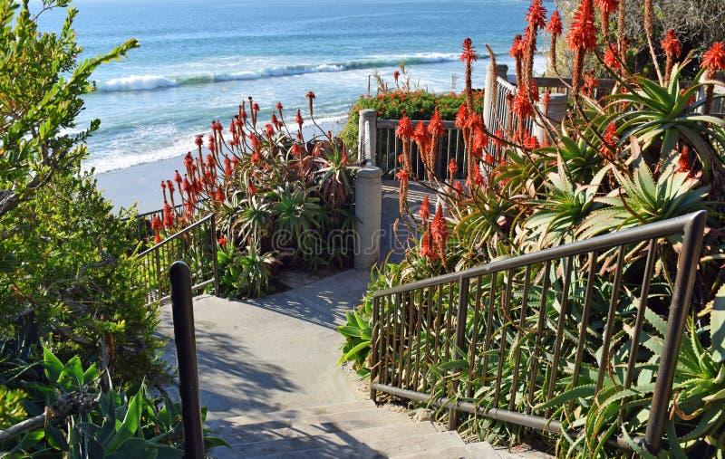 靠岸的楼梯在拉古纳海滩,加利福尼亚的塔利亚街道 免版税图库摄影