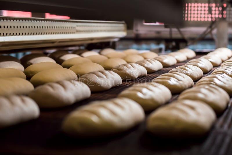 面包制造  库存图片