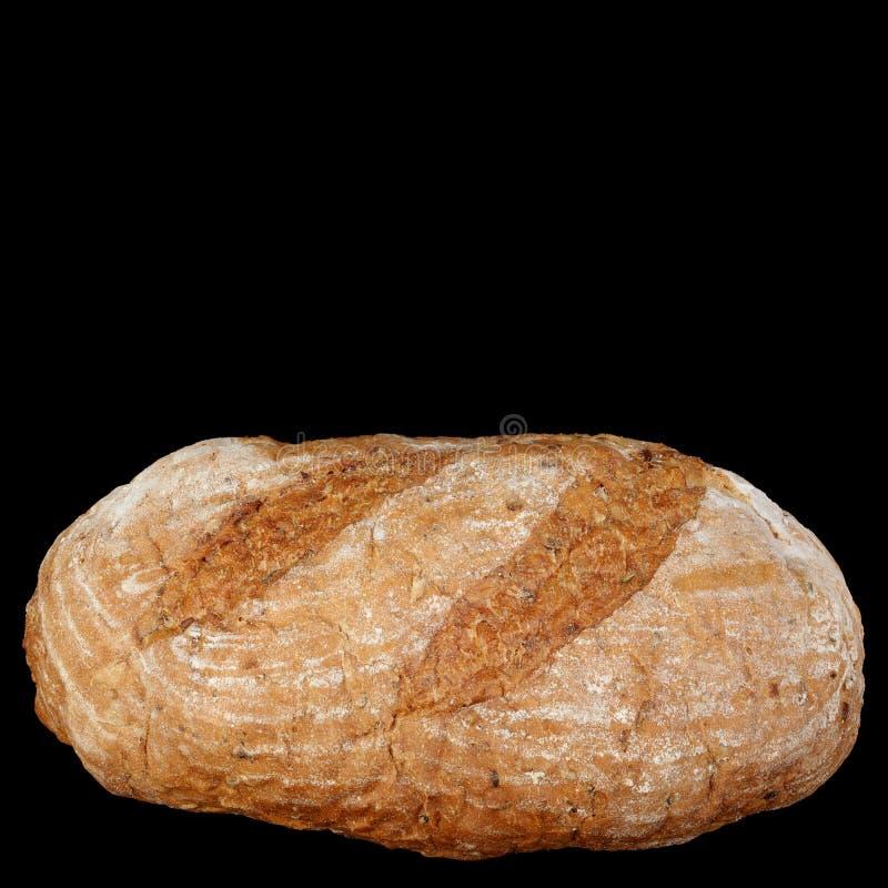 面包南瓜 免版税库存图片