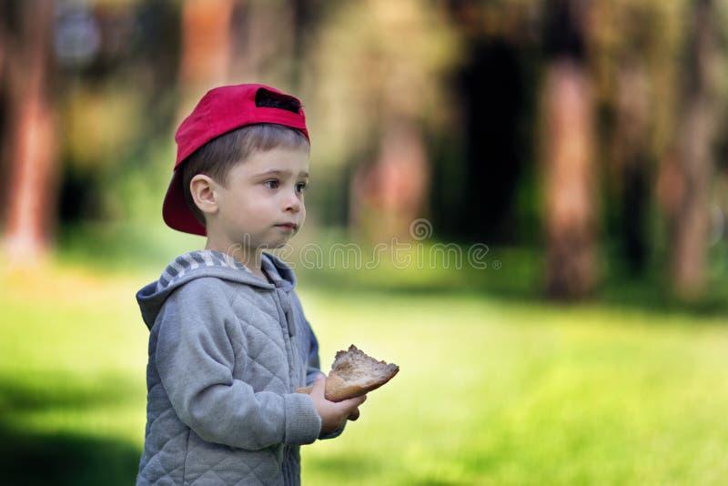 面包在孩子的手上 男孩在森林在他的手上拿着食物 免版税图库摄影