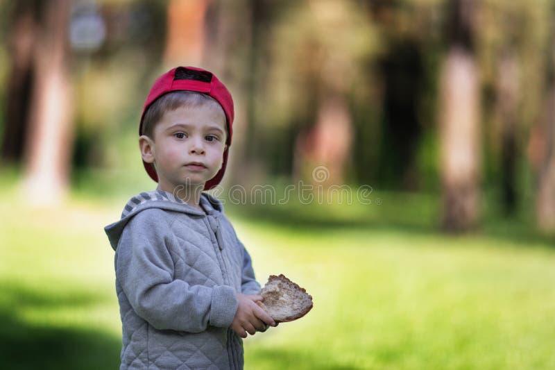 面包在孩子的手上 男孩在森林在他的手上拿着食物 图库摄影