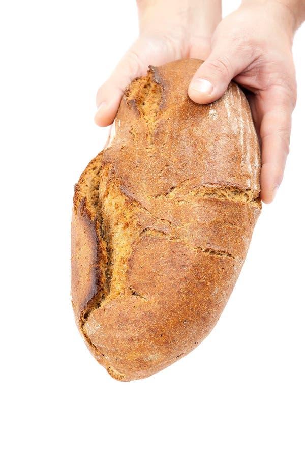 面包新现有量 免版税库存图片