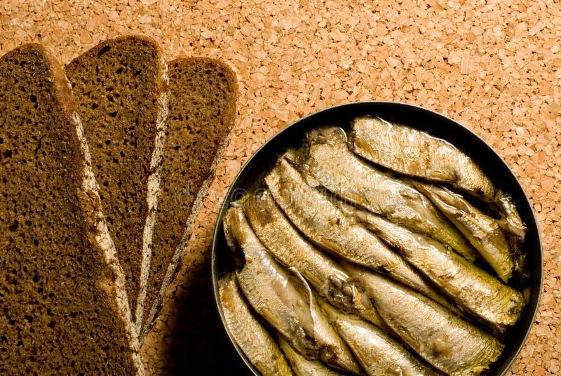 面包沙丁鱼 免版税库存照片