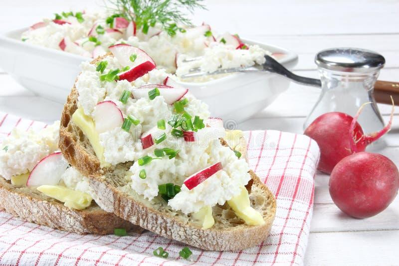 面包用黄油、酸奶干酪和萝卜 免版税库存图片