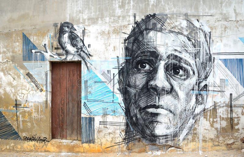 面孔和鸟街道画艺术  免版税库存照片