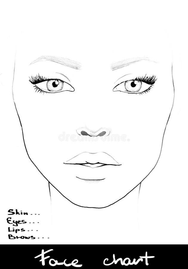 面孔图化妆师空白 美丽的纵向妇女 面孔图 化妆师空白 模板 皇族释放例证