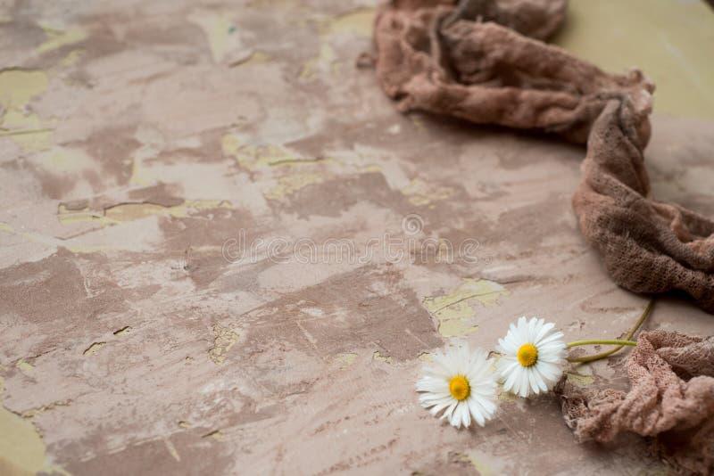 面孔的奶油,绿色苹果,在明亮的背景的黄色雏菊 自然的化妆用品 库存图片