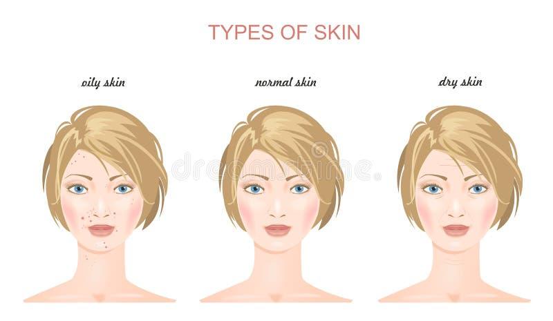 面孔皮肤类型 向量 图库摄影