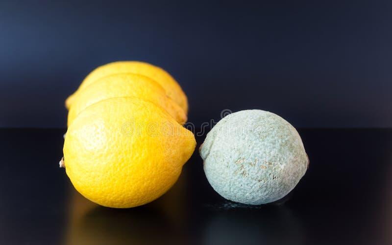 面对健康那些的发霉的柠檬 免版税库存照片