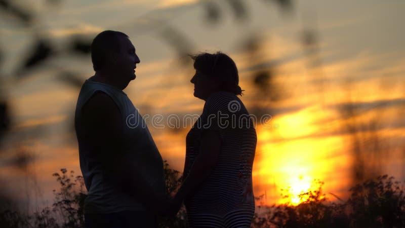 面对的男人和妇女在日落背景 免版税库存照片