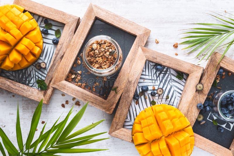面筋免费格兰诺拉麦片的成份用椰子酸奶、蓝莓和芒果 免版税库存照片
