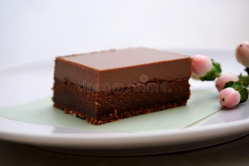 面筋免费自创巧克力乳脂状的乳脂软糖蛋糕,乳脂状和有很多浓郁的可可粉味道 免版税库存图片