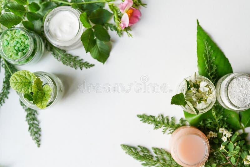 面部身体化妆品、叶子和花在白色桌面背景whith拷贝空间进展 春天皮肤护理布局, 免版税库存图片