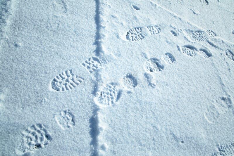 鞋子印刷品在新雪背景中 免版税库存照片