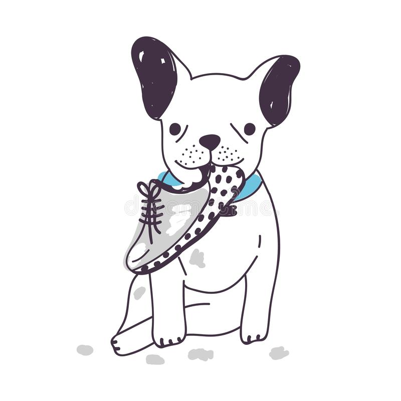 鞋子可笑的狗坐和嚼或者咬 在白色背景隔绝的滑稽的淘气小狗 恶习 库存例证