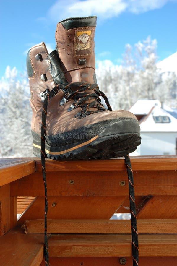 鞋子雪 库存图片