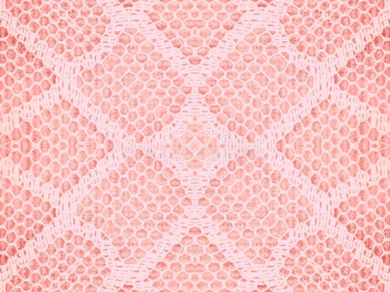 鞋带模式粉红色纹理 库存照片