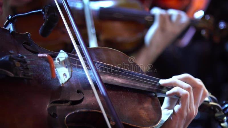 音乐会,弹小提琴,手接近的几名妇女 股票录像