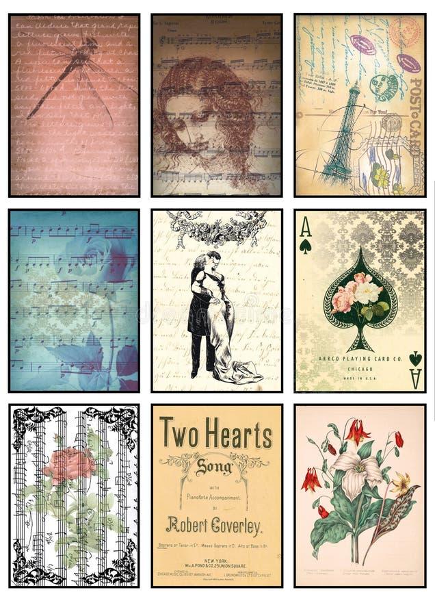 音乐和老纸标记葡萄酒拼贴画套九卡片音乐笔记上升了爱蜻蜓巴黎私通花卉心脏 库存例证