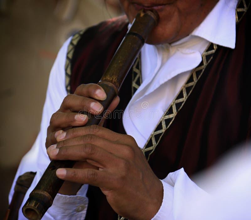 音乐家和长笛 库存照片