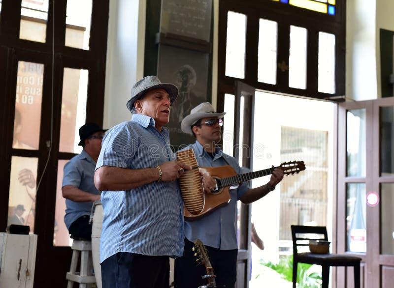 音乐家在哈瓦那 免版税库存照片